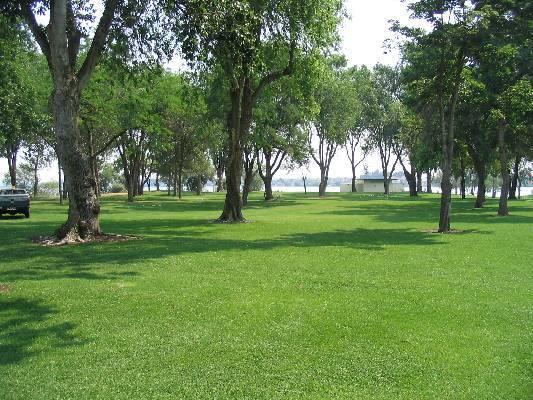 park with grass and trees