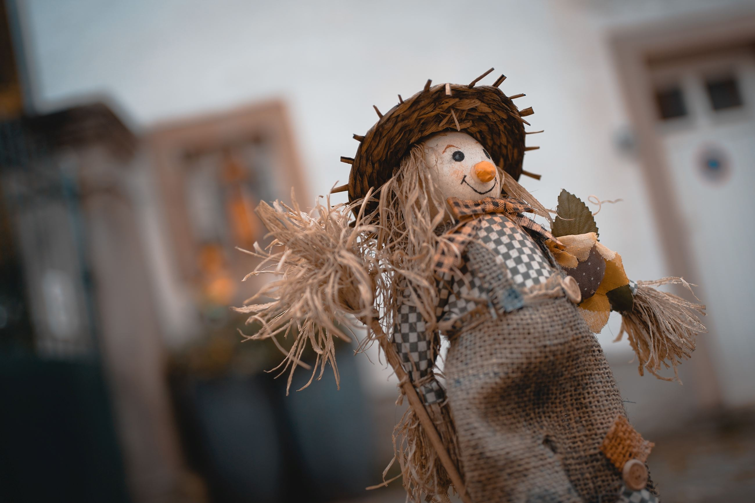 A photograph of a cute scarecrow